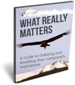 Free Ebook: What Really Matters: A Guide to Defining and Realizing Your Company Aspirations
