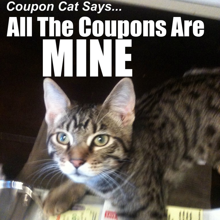 Coupon Cat