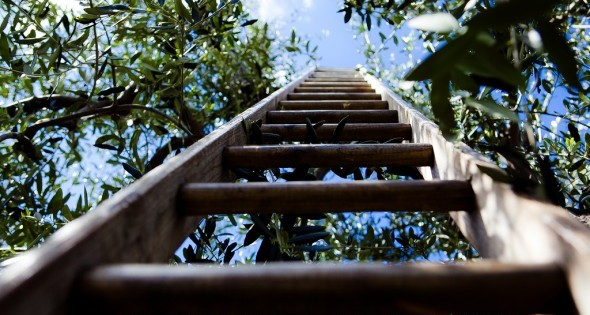 Scala Ladder
