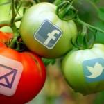 social marketing gardening