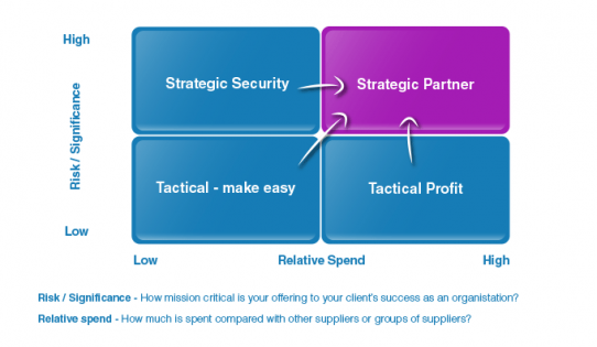 Strategic Partnership Diagram