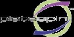 PlateSpin Logo