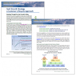 SaaS Growth Strategy eBook