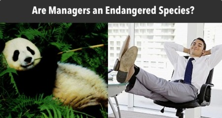 Endangered Managers