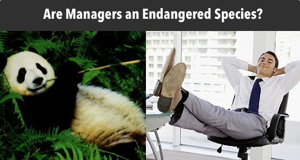 Endangered Species? Agile Management's New Prime Directive