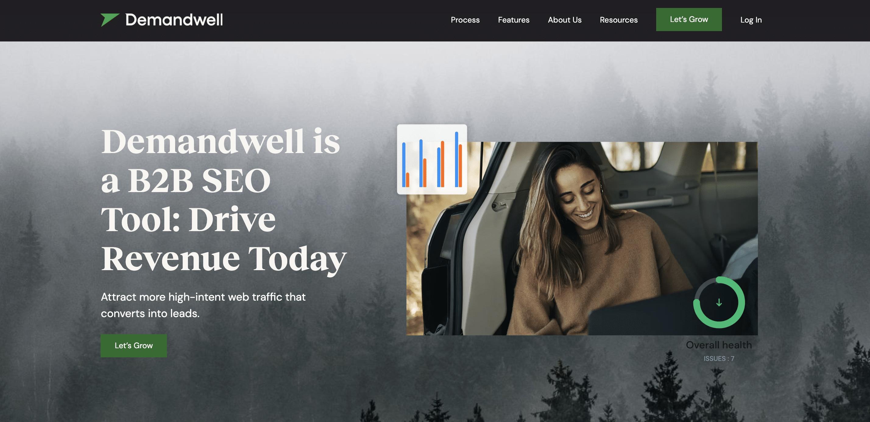 Demandwell screenshot